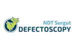 Дефектоскопия / NDT Surgut 2020. Логотип выставки