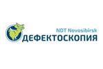 Дефектоскопия / NDT Novosibirsk 2019. Логотип выставки