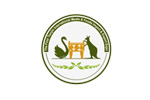 IMFIEE Tianjin 2019. Логотип выставки