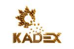 KADEX 2021. Логотип выставки