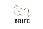Belt and Road International Food Expo / BRIFE 2019. Логотип выставки
