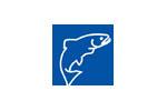 FISHING AND LEISURE 2020. Логотип выставки