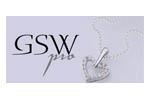 GSW Pro 2013. Логотип выставки