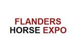 Flanders Horse Expo 2020. Логотип выставки