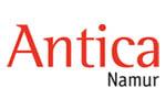 Antica Namur 2021. Логотип выставки