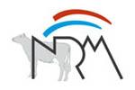 NRM 2014. Логотип выставки