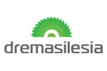 Drema Silesia 2013. Логотип выставки