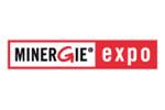 Minergie Expo 2015. Логотип выставки