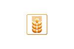 ДальПищеПром 2021. Логотип выставки