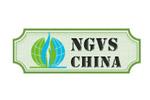 NGVS China 2020. Логотип выставки