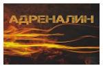 МоторЭкспоШоу 2020. Логотип выставки